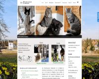 Tierschutzverein Halberstadt e.V. in Halberstadt