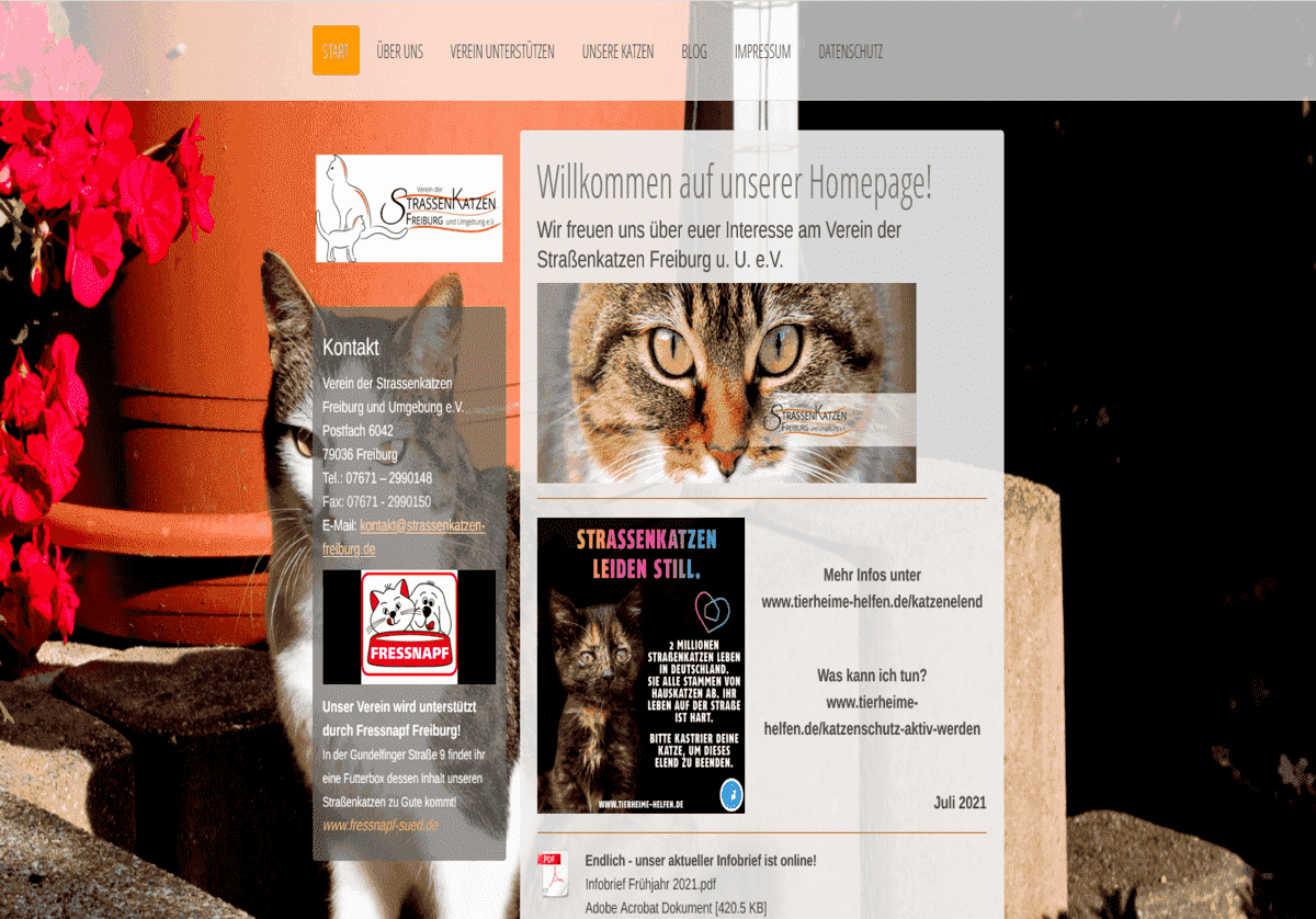 Verein der Straßenkatzen Freiburg u.U. e.V.